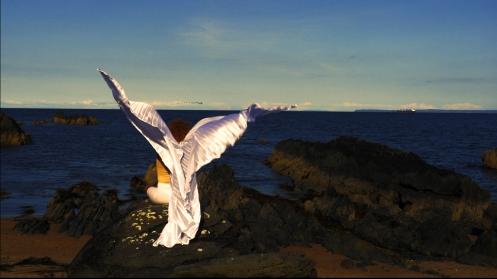 bird 1 .jpg
